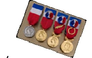 Medaille Du Travail Snap Pole Emploi